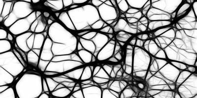 La inmunoterapia combinada reduce el melanoma diseminado hasta el cerebro