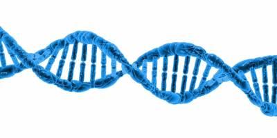 Los científicos encuentran un nuevo mecanismo de predisposición en cáncer de colon