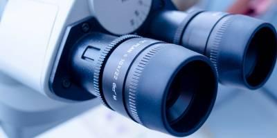 Investigadores del Comprehensive Cancer Center of MedUni Vienna y AKH Vienna han encontrado un nuevo marcador para mejorar el pronóstico en el cáncer gástrico y esofágico